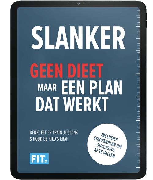Slanker-Ebook